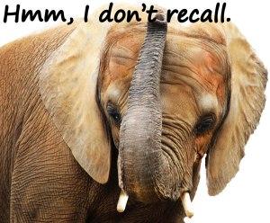 elephant-dontrecall-Sq